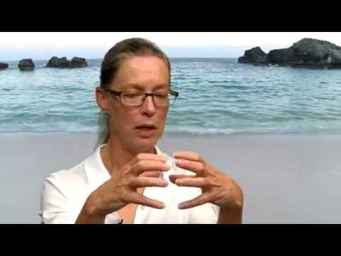 The Great Pacific Garbage Patch explained
