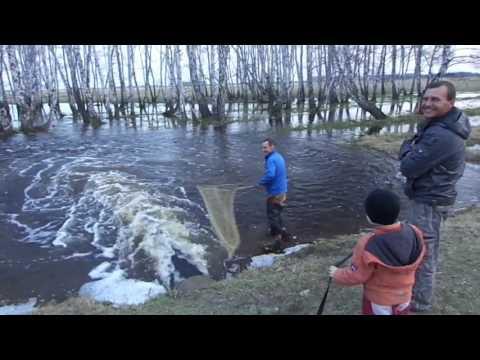 Древний метод  рыбалки..