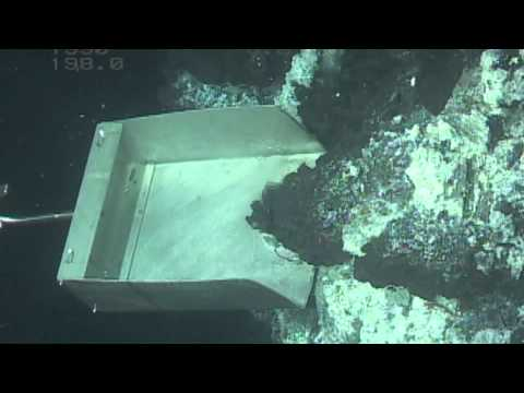 Portland State University: The Ocean Floor is a Scientific Frontier