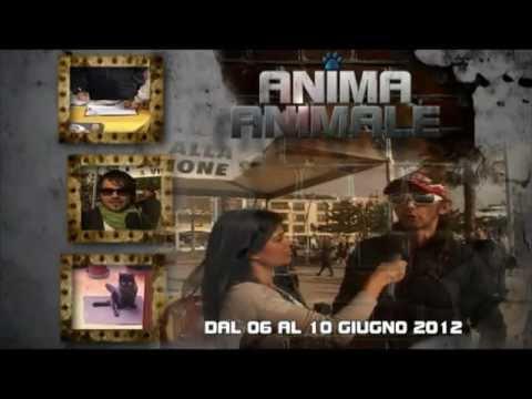 Promo per la 8ª puntata del format ANIMA ANIMALE – Tancri Produzioni Video
