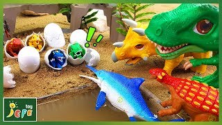 Whose dinosaur egg is it? The egg turns into a huge real dinosaurs! Play like a magic trick!ㅣJefeToy