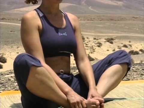 Ashtanga Yoga - Le yoga de l'Energie