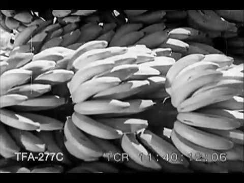 Jamaican Harvest (1938) thumbnail