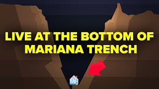 Could You Live At The Bottom Of The Mariana Trench?