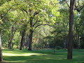 Doc Watson - Shady Grove