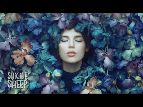 Whethan Can't Hide ft. Ashe music videos 2016