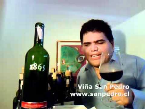 Viña San Pedro Cabernet Sauvignon 1865 2006