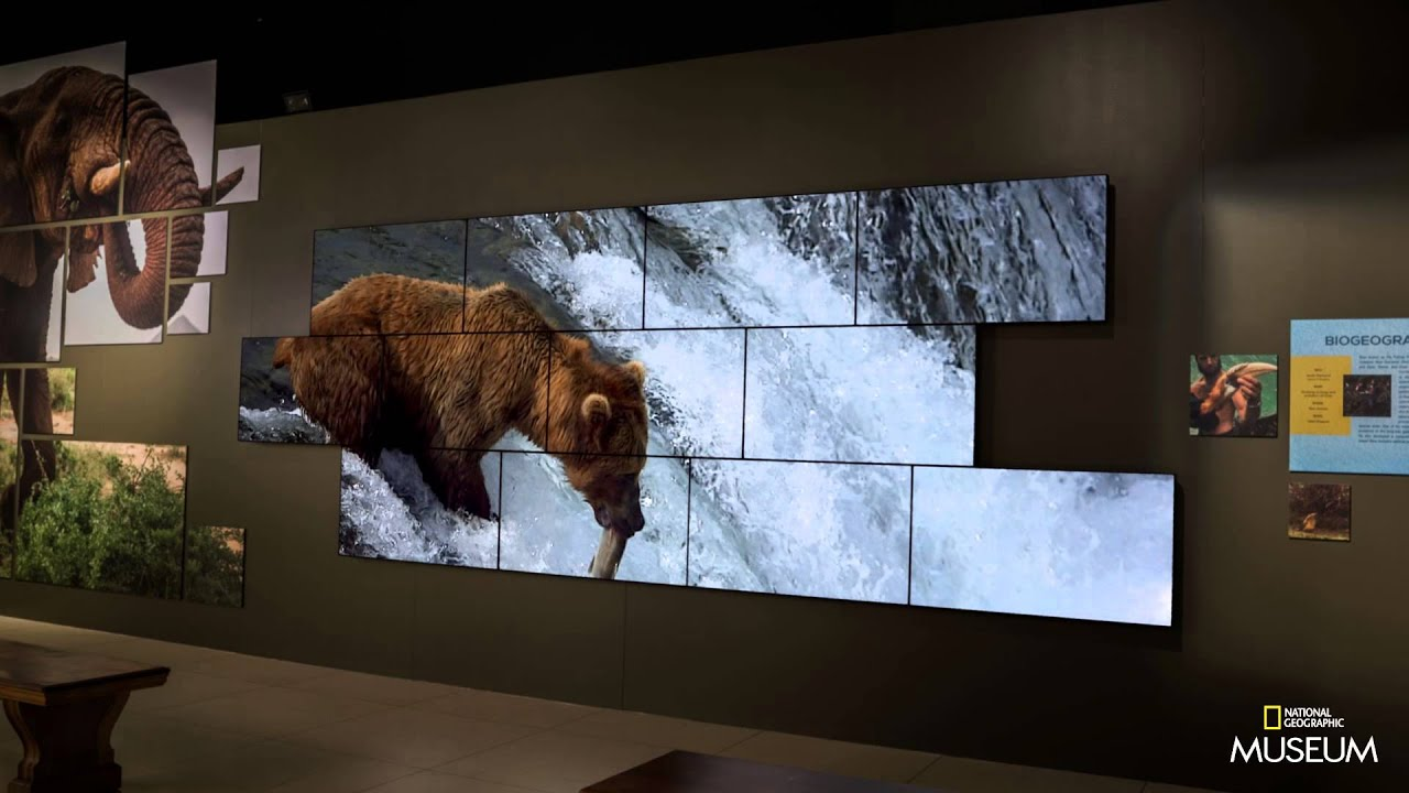 national geographic museum youtube