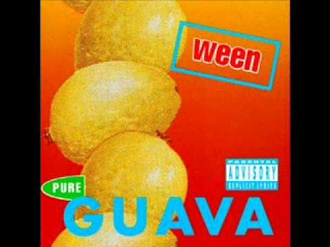 Ween - Touch My Tooter