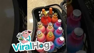 Alcohol Run gone Wrong  || ViralHog