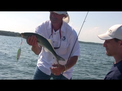 Fluke, Sea Bass, and Bluefish FIshing using Viper Spoons and Boa Jig'rs