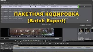 Пакетная кодировка (Batch Export) в Эдиус (Edius)