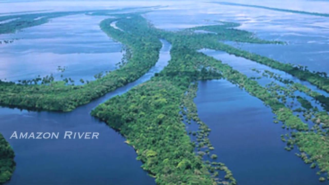 Amazon River On World Map Car Interior Design