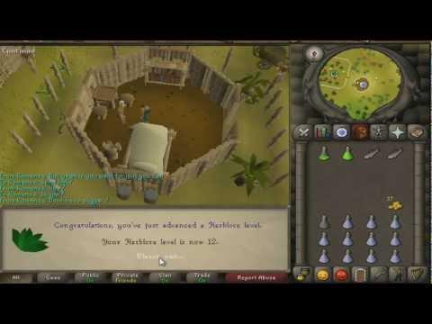 Runescape 2007 Jungle Potion Quest Guide