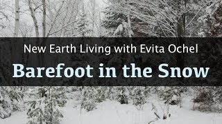 Grounding Barefoot in Snow [New Earth Living ep. 1]