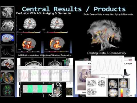 MRI Biomarkers in Alzheimer and Brain Diseases - Juan Antonio Hernandez