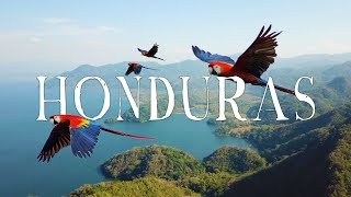 Honduras Travel Video | WANDR (Roatan, Copan, Lake Yojoa, Macaws, and MORE...)