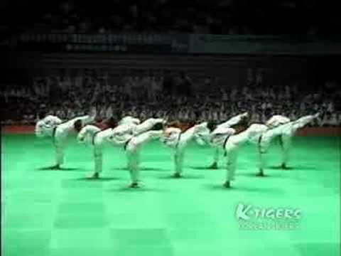 Ktigers Taekwondo Promotion Film video