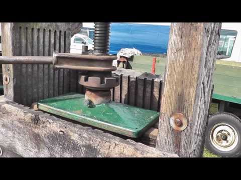 Cider making using an original 19th century mill and press with The Norfolk Cider Co cider review