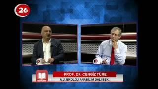 Günlük | Prof.Dr.Cengiz Türe
