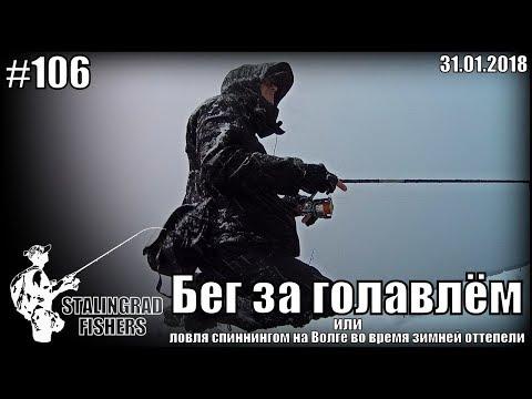 Бег за голавлём или ловля спиннингом на Волге во время зимней оттепели - 31.01.2018