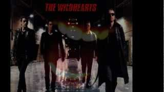 Watch Wildhearts Soundog Babylon video