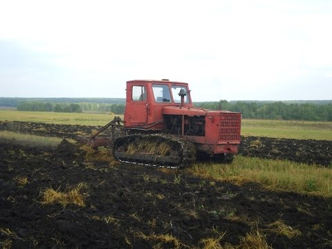 Tractor T-4A plowing plowed fields (without sound) /// Трактор Т-4А вспашка зяби (без звука)