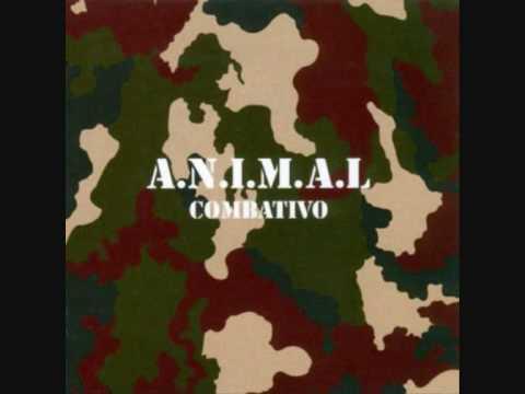 Animal - Combativo
