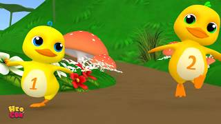 Five little Ducks | kids song Baby song | Nursery Rhymes for Babies