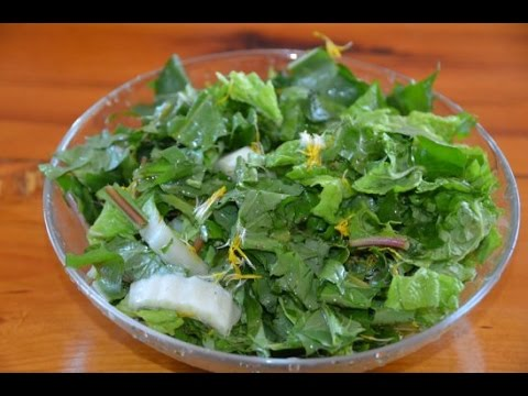 Мультивитаминный салат из одуванчиков
