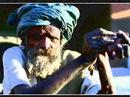 INDIA - photo travelogue Jaipur Rajasthan foto reisverslag