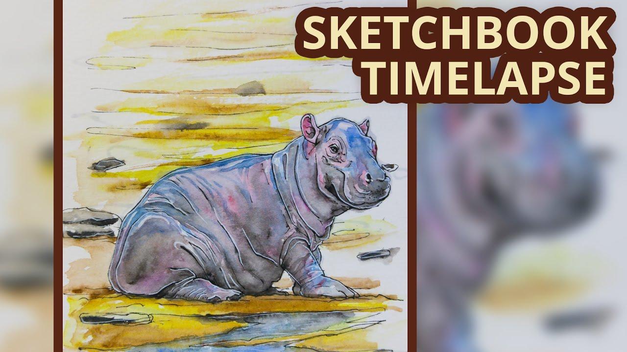 Beaver swimming cartoon