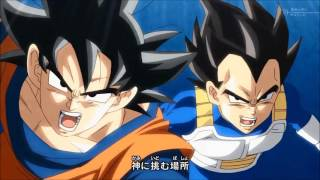 Dragon Ball Super OP by The Covers