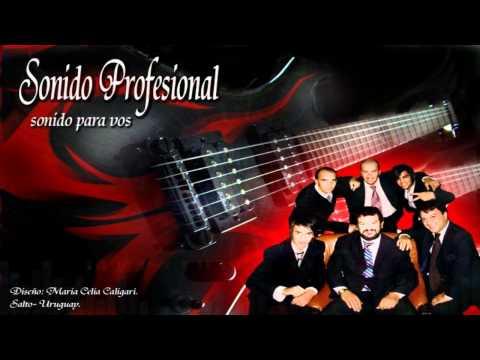 Sonido Profesional - El Tren Del Olvido | Cumbia 2011