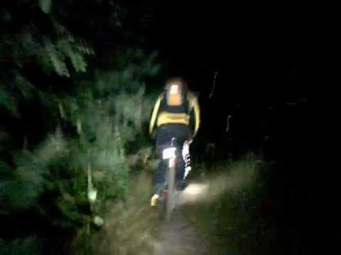 Night Forest Ride