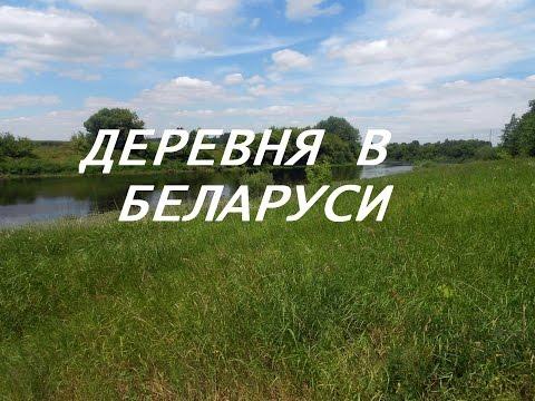 ДЕРЕВНЯ В БЕЛАРУСИ. ВЛОГ