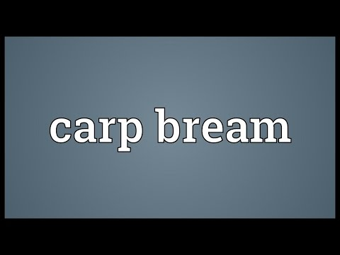 Carp bream definition meaning for Carp meaning
