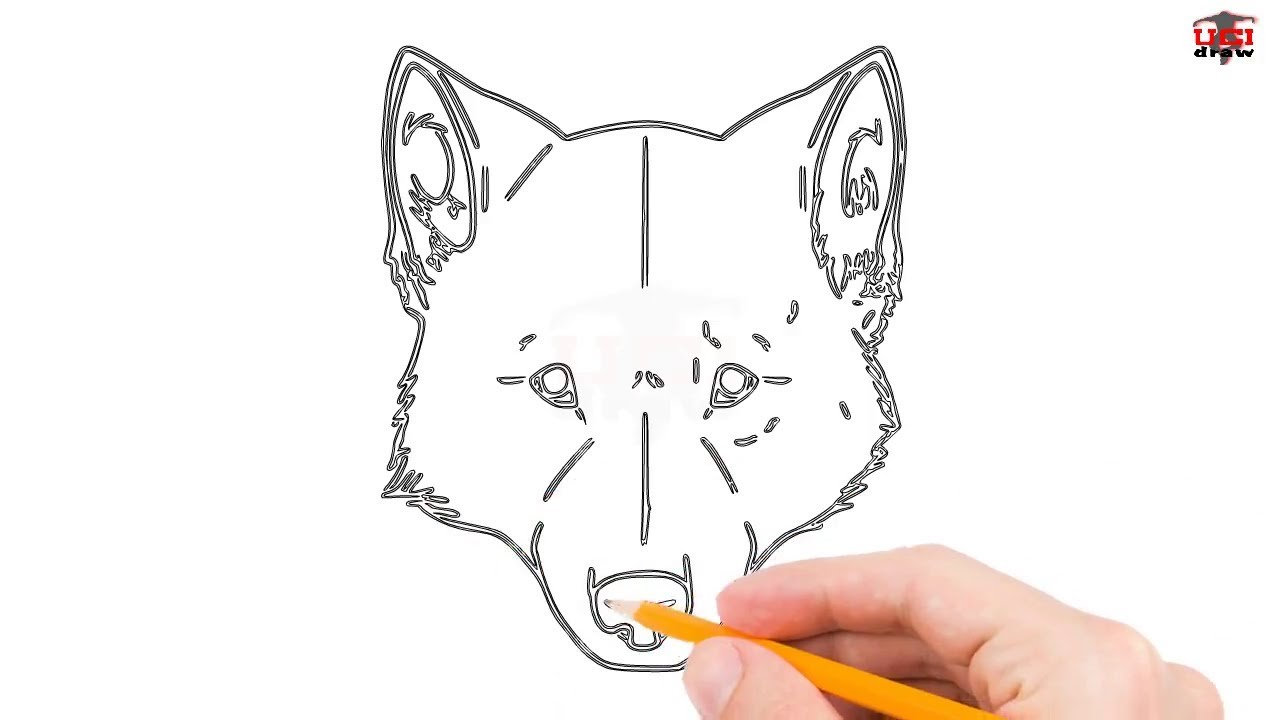 How to draw a wolf face step by step