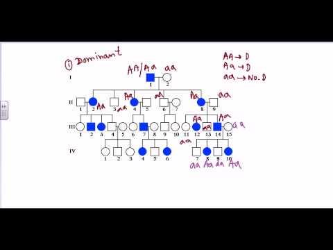 Pedigree analysis- sex linked dominant pedigree