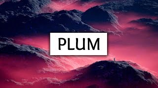 Troye Sivan ‒ Plum (Lyrics)