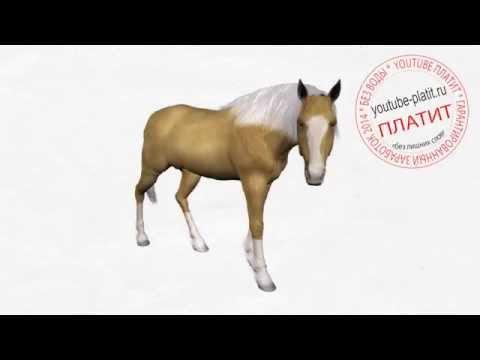 Видео как нарисовать лошадь из мультика