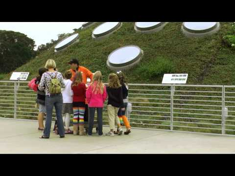 Living Roof, California Academy of Sciences, SWA Group