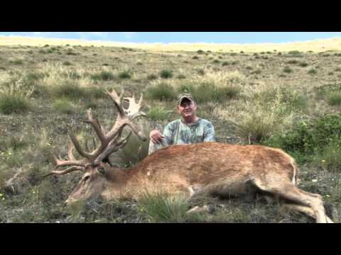 Testimonial for Gary Herbert's New Zealand Hunting