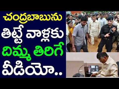 Straight Answer To Chandrababu Naidu Critics, Andhra Pradesh