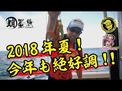 2018夏、今年もタコ釣り開幕!!