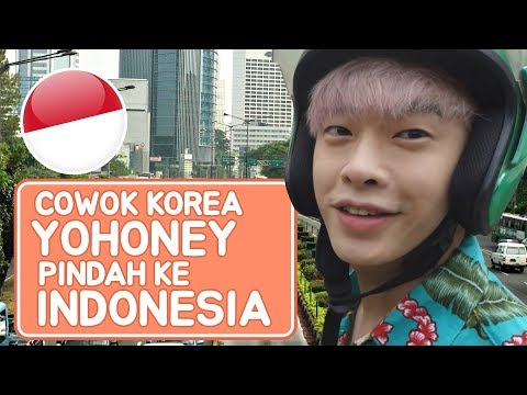 download lagu YOHONEY COWOK KOREA PINDAH KE INDONESIA !! gratis