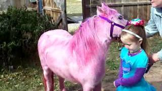 Pink Pony Surprise For Rosie Dale's 5th Happy Birthday Party Bronies UPDATE