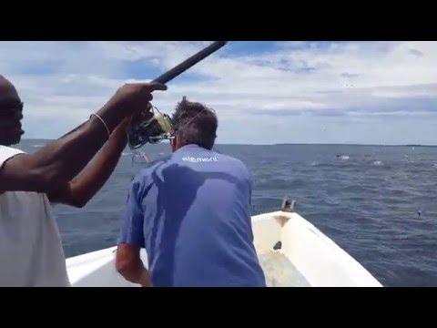Narinda sport fishing  chasse de thon madagascar