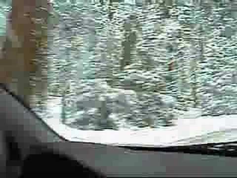 Driving in Sequoia National Park