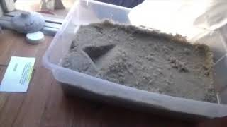 The Truth About Orgonite PT3: Easy Way to Make A Mold for Orgonite Distributors